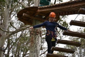 jabobs balance ladder on tree tops ropes course
