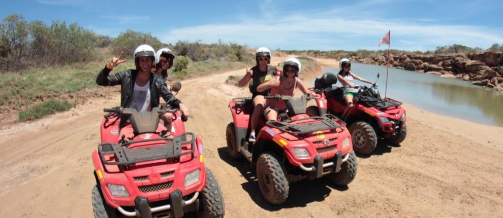quad bike adventures tours bushsports